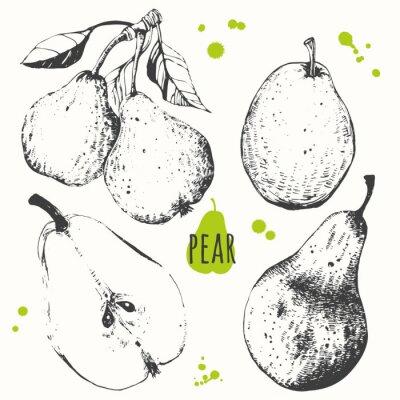 Adesivo Pera. Set di disegnati a mano pera. alimenti biologici freschi.