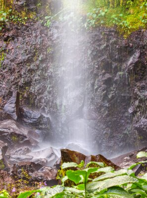 Adesivo petite chute d'eau à Anse des Cascades, Ile de la Réunion