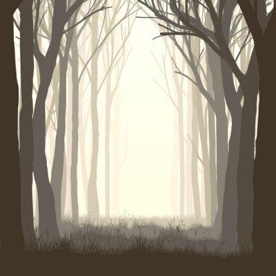 Adesivo Piazza illustrazione radura nella foresta.