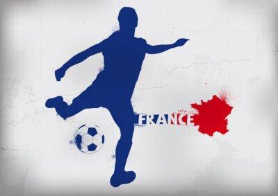 Adesivo Piede Francia Graffiti