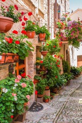 Adesivo Pieno di fiori portico piccola città in Italia, Umbria