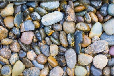 Adesivo pietre del mare