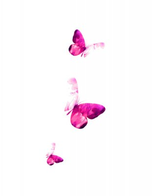 Adesivo Pink flying butterflies in watercolor. Mixed media. Vector illustration