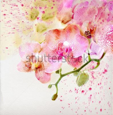 Adesivo Pittura ad acquerello, sfondo floreale