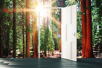 Adesivo Porta aperta al concetto di foresta di sole