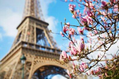 Adesivo Primavera a Parigi