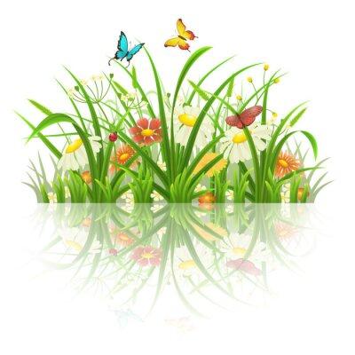 Adesivo primavera erba, fiori e farfalle con la riflessione su bianco