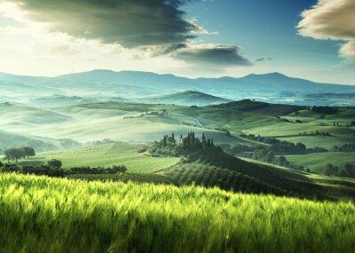 Adesivo Prime ore del mattino di primavera in Toscana, Italia