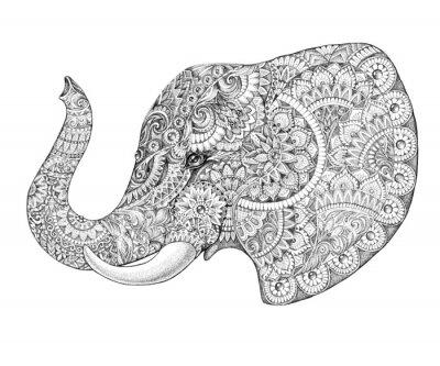 Adesivo Profilo Tattoo elefante con i modelli e ornamenti