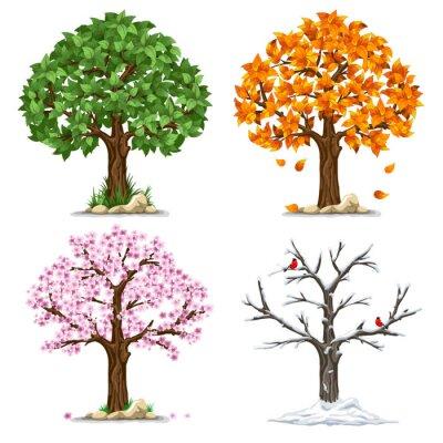 Adesivo Quattro stagioni