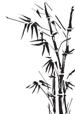 Adesivo Rami di bambù isolato su sfondo bianco. Vettore