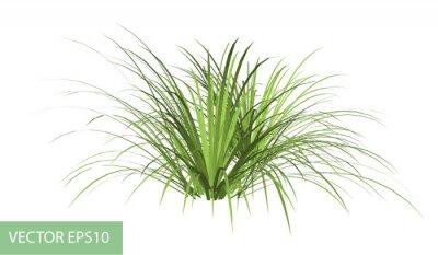 Adesivo ramo con foglie verdi isolato su bianco