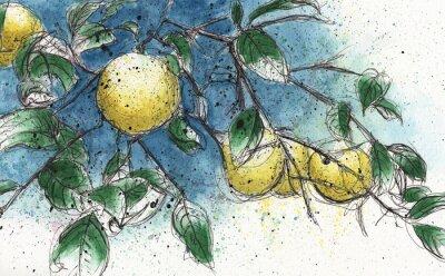 Adesivo ramo di un albero di limone