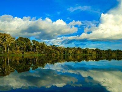 Adesivo Rio delle Amazzoni