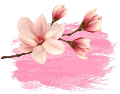 Adesivo Rosa magnolia vernice ramo banner. Vettore.