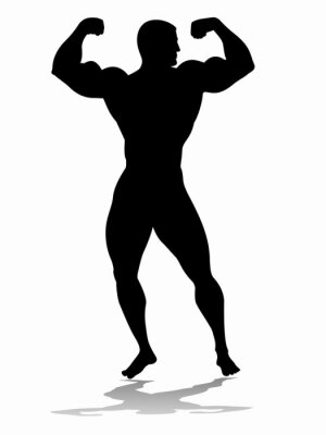 Adesivo sagoma di bodybuilder, disegno vettoriale