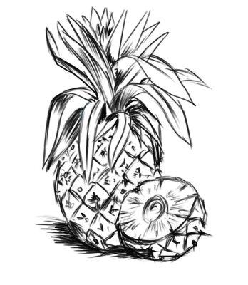 Adesivo schizzo per pineaple