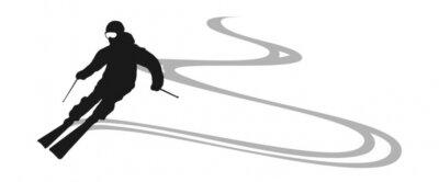 Adesivo sciatore