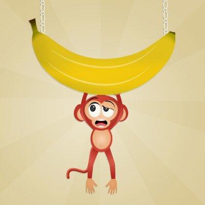 Adesivo scimmia con la banana