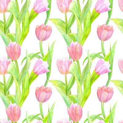 Adesivo senza soluzione di tessitura con eleganti tulipani per la progettazione. pittura ad acquerello