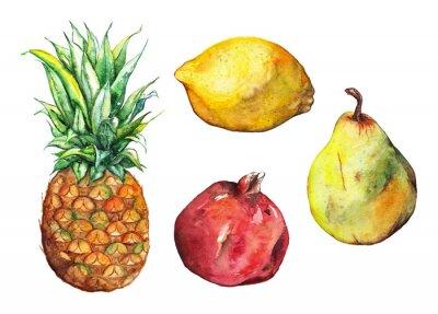 Adesivo set Acquerello ananas melograno limone pera isolato