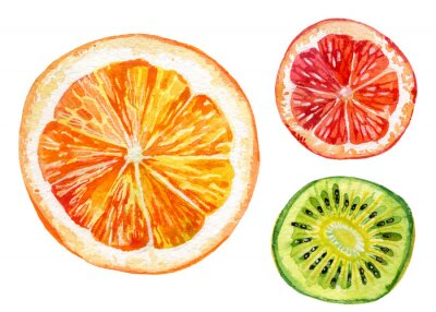 Adesivo set Acquerello di arancia fresco, kiwi e pompelmo