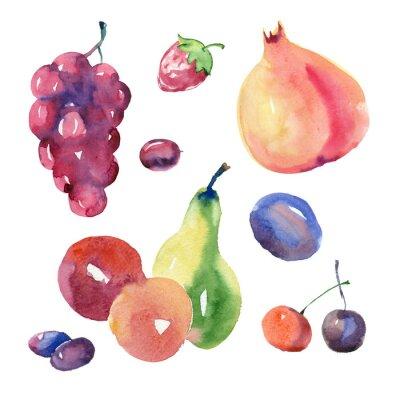 Adesivo Set di frutta acquerello