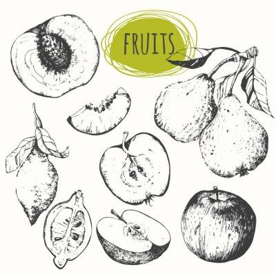 Adesivo Set di mela disegnati a mano, limone, pera, pesca. frutti schizzo.