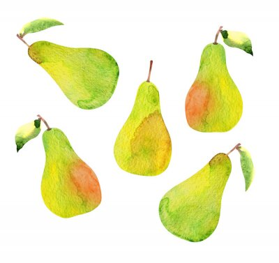Adesivo set of pears isolated, watercolor