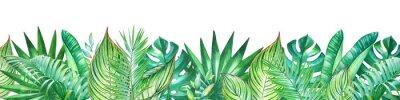 Adesivo Sfondo con piante tropicali dell'acquerello. Utile per la progettazione di banner, biglietti, auguri, inviti e molti altri.