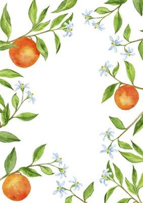 Adesivo sfondo con rami di alberi da frutto, fiori, foglie e arance