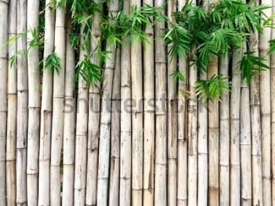 Adesivo Sfondo di bambù naturale