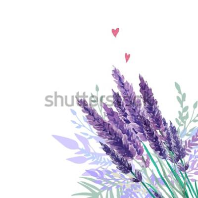 Adesivo Sfondo di bouquet di lavanda dell'acquerello. Cornice con piante vintage dipinte a mano, decorazioni floreali e cuori. Illustrazione vettoriale