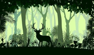 Adesivo sfondo foresta con cervi selvatici di alberi