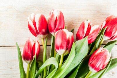 Adesivo Sfondo per congratulazioni, biglietti di auguri. Fiori freschi dei tulipani della molla, sullo spazio di legno bianco della copia di vista superiore del fondo