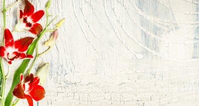 Adesivo sfondo shabby chic con fiori di orchidea rossa, vista superiore, posto per il testo.