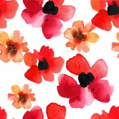 Adesivo Sfondo trasparente con papaveri rossi acquerello.