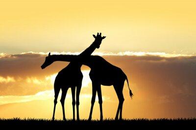Adesivo silhouette giraffa al tramonto