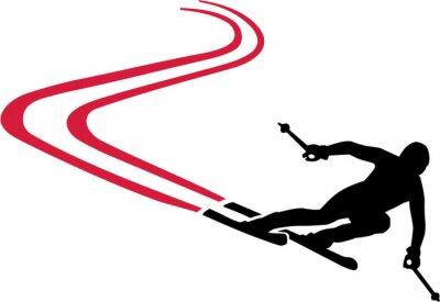 Adesivo Ski Run con Red pista