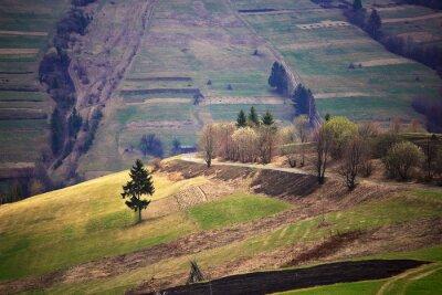 Adesivo Soleggiato primavera nel villaggio di montagna. Campi e colline