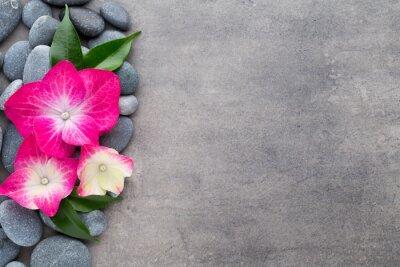 Adesivo Spa pietre e fiori, su sfondo grigio.