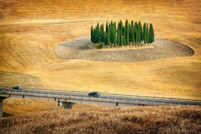Adesivo Splendide vedute di paesaggio estivo in Toscana