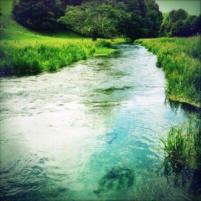 Adesivo Spring water