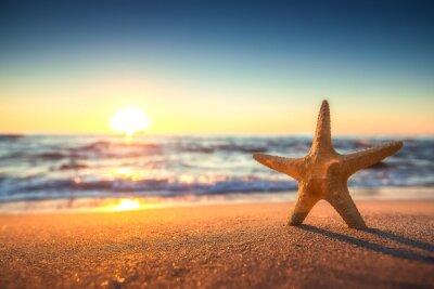 Adesivo Stella di mare sulla spiaggia al sorgere del sole