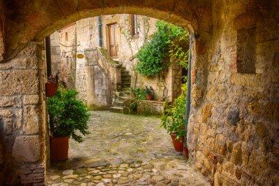 Adesivo Stradina di tufo della città medievale di Sorano con l'arco, piante verdi e ciottoli, Viaggi Italia sfondo