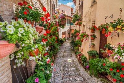Adesivo Street nel piccolo paese in Italia nella giornata di sole, Umbria