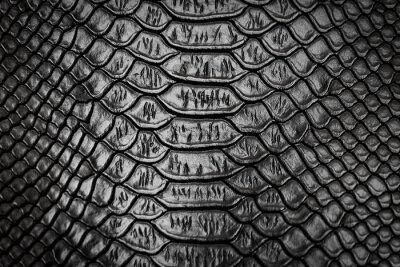Adesivo Struttura del modello di pelle di serpente nero