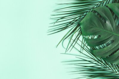 Adesivo Summer composition. Palm leaves on mint background. Summer concept. Flat lay, top view, copy space