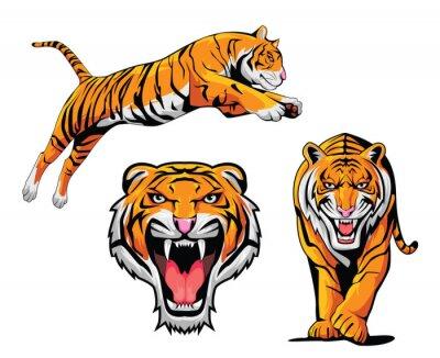 Adesivo Tiger Illustrazione Set