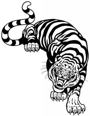Adesivo tigre bianco nero